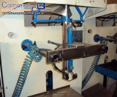 Embaladora vertical Raumak